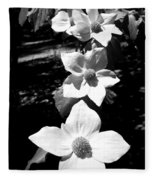 Yosemite Dogwoods Black And White Fleece Blanket