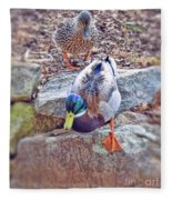 You Go First - Male And Female Mallard Ducks Fleece Blanket