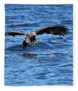Young Bald Eagle I Fleece Blanket