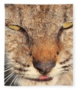 Young Bobcat Portrait 01 Fleece Blanket