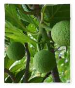 Young Breadfruit Fleece Blanket