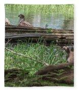 Young Buck Watching Eagle Fleece Blanket