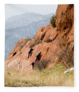 Young Climber In Red Rock Canyon Fleece Blanket