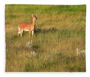 Young Deer Fleece Blanket