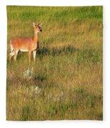 Young Deer Fleece Blanket