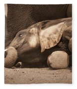 Young Elephant Lying Down Fleece Blanket