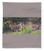 Young Foxes At The Den Fleece Blanket