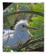 Young Great Egret Fleece Blanket