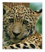 Young Jaguar Fleece Blanket