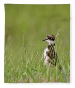 Young Killdeer In Grass Fleece Blanket