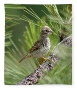 Young Lark Sparrow 2 Fleece Blanket