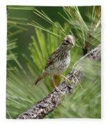 Young Lark Sparrow 3 Fleece Blanket