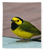 Young Male Hooded Warbler 6 Fleece Blanket