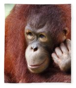 Young Orang Utan Looking Thoughtful Fleece Blanket