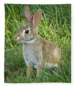 Young Rabbit Fleece Blanket