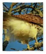 Young Red-tail Fleece Blanket