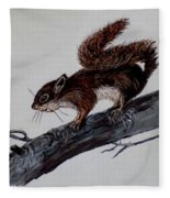 Young Squirrel Fleece Blanket