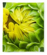 Young Sunflower Fleece Blanket