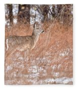 Young White-tailed Deer In The Snow Fleece Blanket