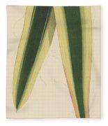 Yucca Leaf Fleece Blanket