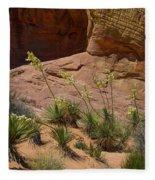 Yucca Plants Valley Of Fire Fleece Blanket