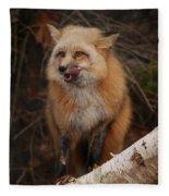 Yummy Fleece Blanket