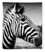 Zebra 2 Fleece Blanket