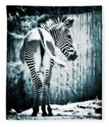 Zebra Blues  Fleece Blanket