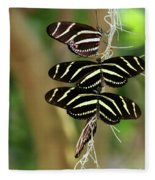 Zebra Butterflies Hanging On Fleece Blanket