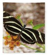Zebra Butterfly Fleece Blanket