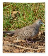 Zebra Dove Fleece Blanket