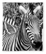 zebra Family Fleece Blanket