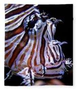 Zebra Fish Fleece Blanket