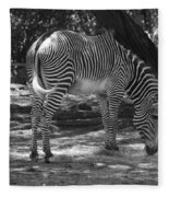 Zebra In Black And White Fleece Blanket