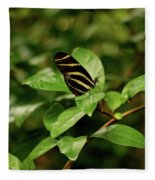 Zebra Longwing Butterfly Fleece Blanket