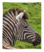 Zebra Portrait Fleece Blanket