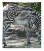 Zebra Fleece Blanket