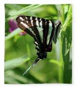 Zebra Swallowtail Butterfly In Green Fleece Blanket