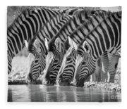 Zebras Drinking Fleece Blanket