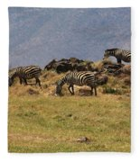 Zebras In The Ngorongoro Crater, Tanzania Fleece Blanket