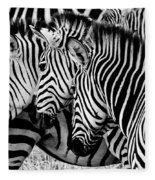 Zebras Triplets Fleece Blanket