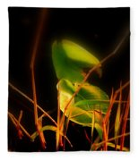 Zen Photography - Sunset Rays Fleece Blanket