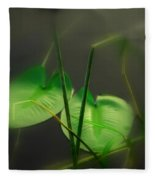 Zen Photography Iv Fleece Blanket