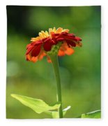 Zinnia Flower Fleece Blanket