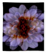 Zinnia On Black Fleece Blanket