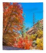 Zion Autumn Colors Fleece Blanket