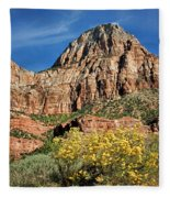 Zion Canyon - Navajo Sandstone Fleece Blanket