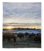 Zion Mountain Ranch Buffalo Herd Fleece Blanket