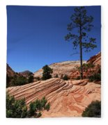 Zion Park Colors And Texture Fleece Blanket