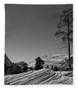 Zion Park Geology Texture Fleece Blanket